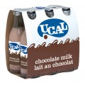 UCAL LEITE COM CHOCOLATE 24 X 250ML